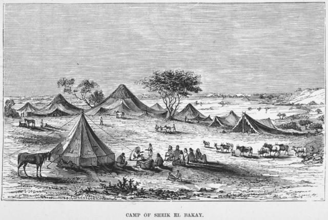 Camp of Sheik El Bakay