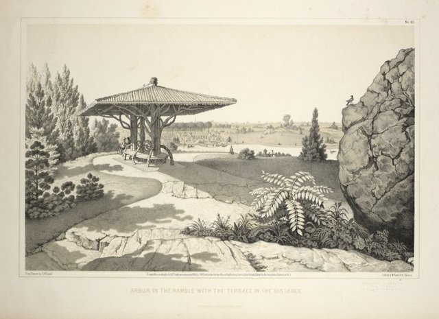 Arbor in the Ramble with terrace in the distance. From Central Park Album, 1862