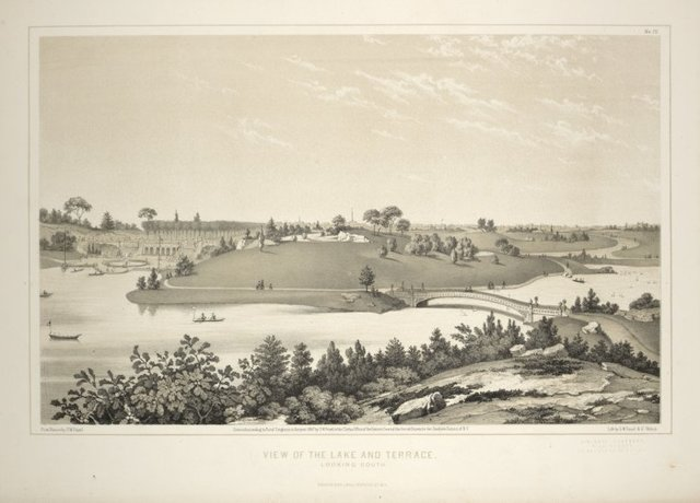 View of the Lake and Terrace Looking South [from Central Park Album]