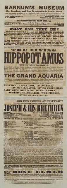 """Programme for Barnum's Museum promoting """"The Living Hippopatamus""""."""