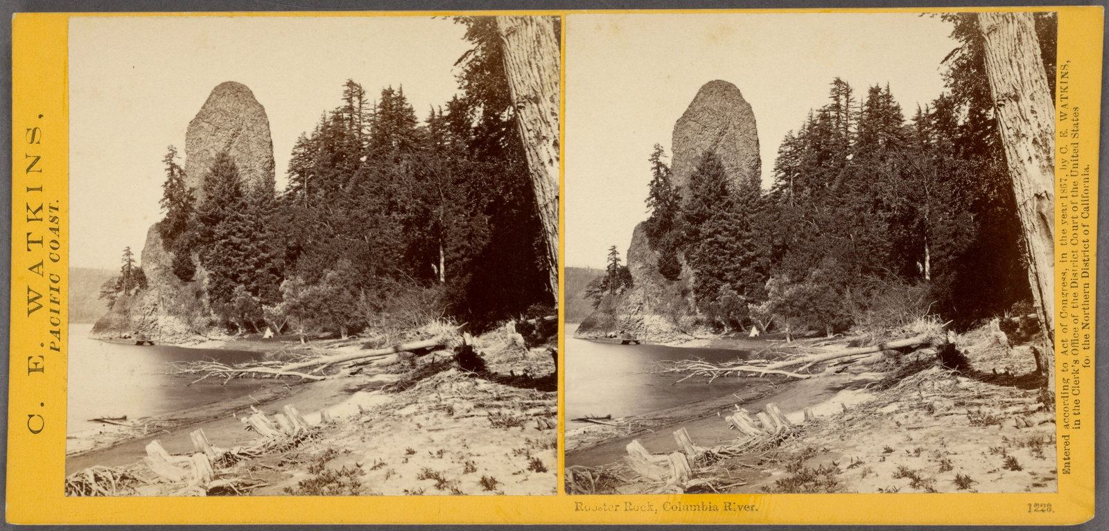 Rooster Rock, Columbia River.