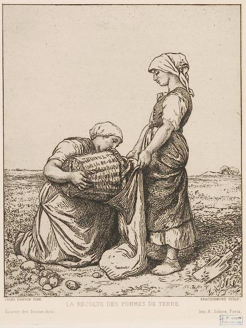 La récolte des pommes de terre [d'après Breton].