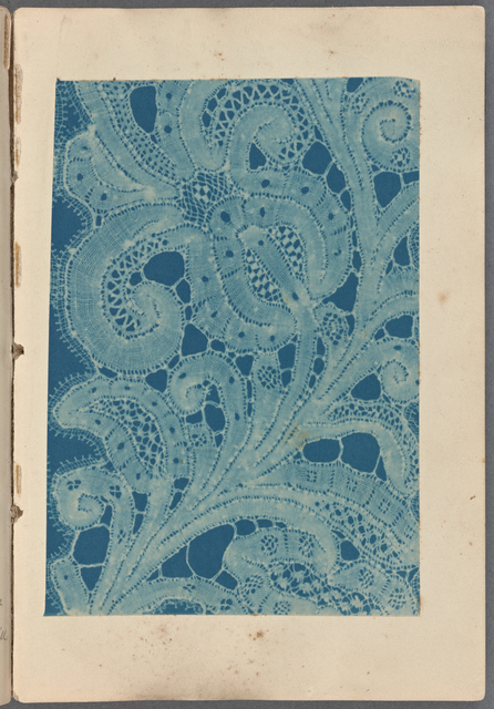 Braid and thread lace plate 1 opp. p. 20