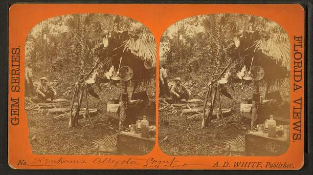 Denhams alligator camp Gulf Coast.