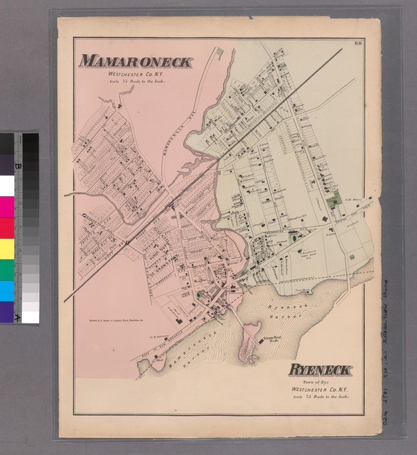Plate 60: Mamaroneck, Westchester Co. N.Y. - Ryeneck, Town of Rye, Westchester Co. N.Y.