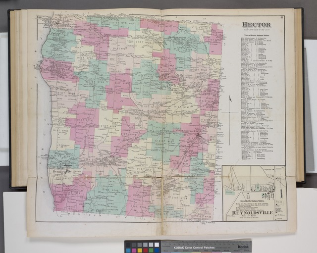 Hector [Township]; Town of Hector Business Notices. ; Reynoldsville Business Notices. ; Reynoldsville [Village]