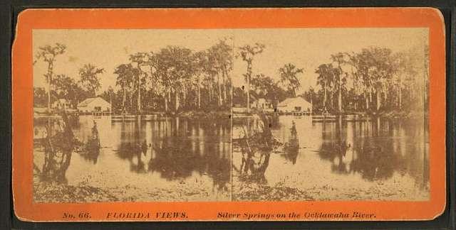 Silver Springs on the Oklawaha River.