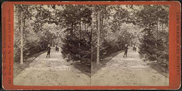 """View in Hoey's Park. """"Hollywood,"""" Long Branch."""