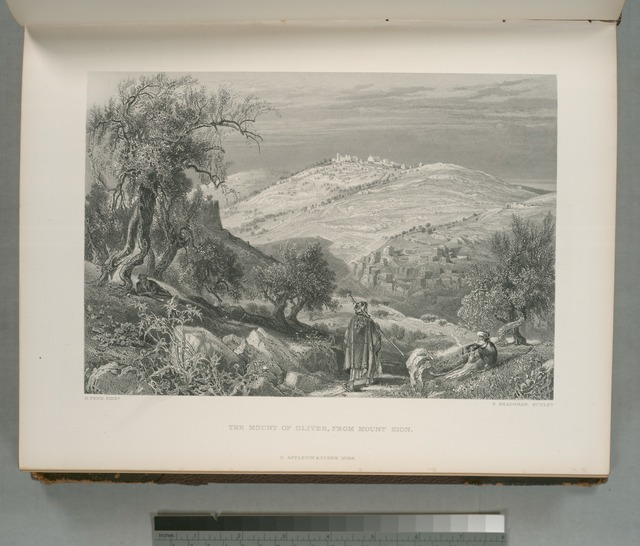 The Mount of Olives, from Mount Zion