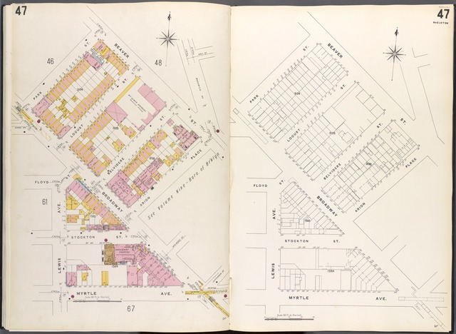 Brooklyn V. 3, Plate No. 47 [Map bounded by Beaver St., Arion PL., Myrtle Ave., Lewis Ave., Park St.]