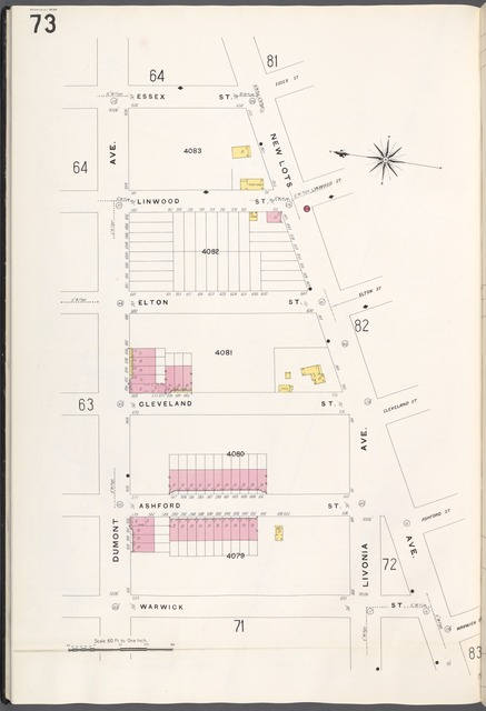 Brooklyn V. 8, Plate No. 73 [Map bounded by Essex St., New Lots Ave., Warwick St., Dumont Ave.]