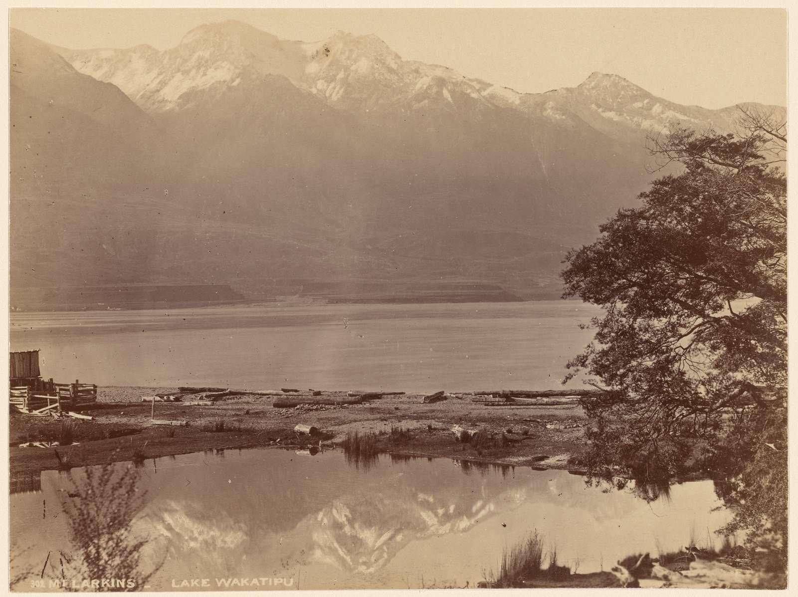 Mt. Larkins. Lake Wakatipu