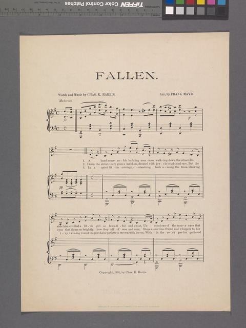 Fallen by the wayside : a leaf torn from life's history