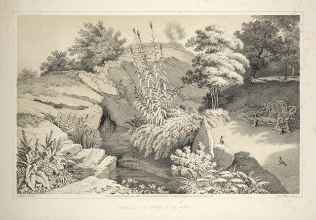 Source of the spring in the Rample [sic] From Central Park Album, 1862