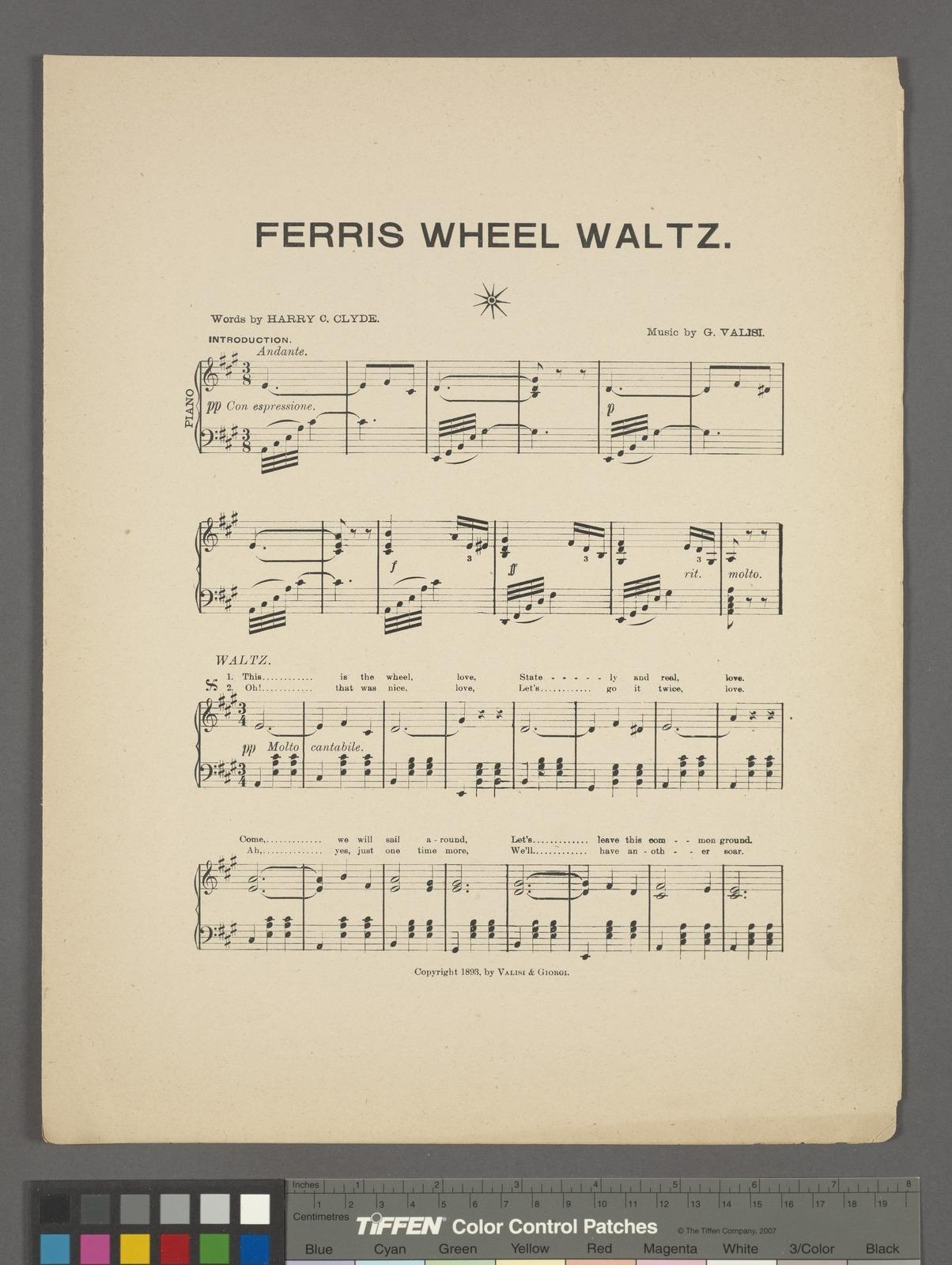 The ferris wheel souvenir