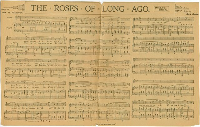 The roses of long ago