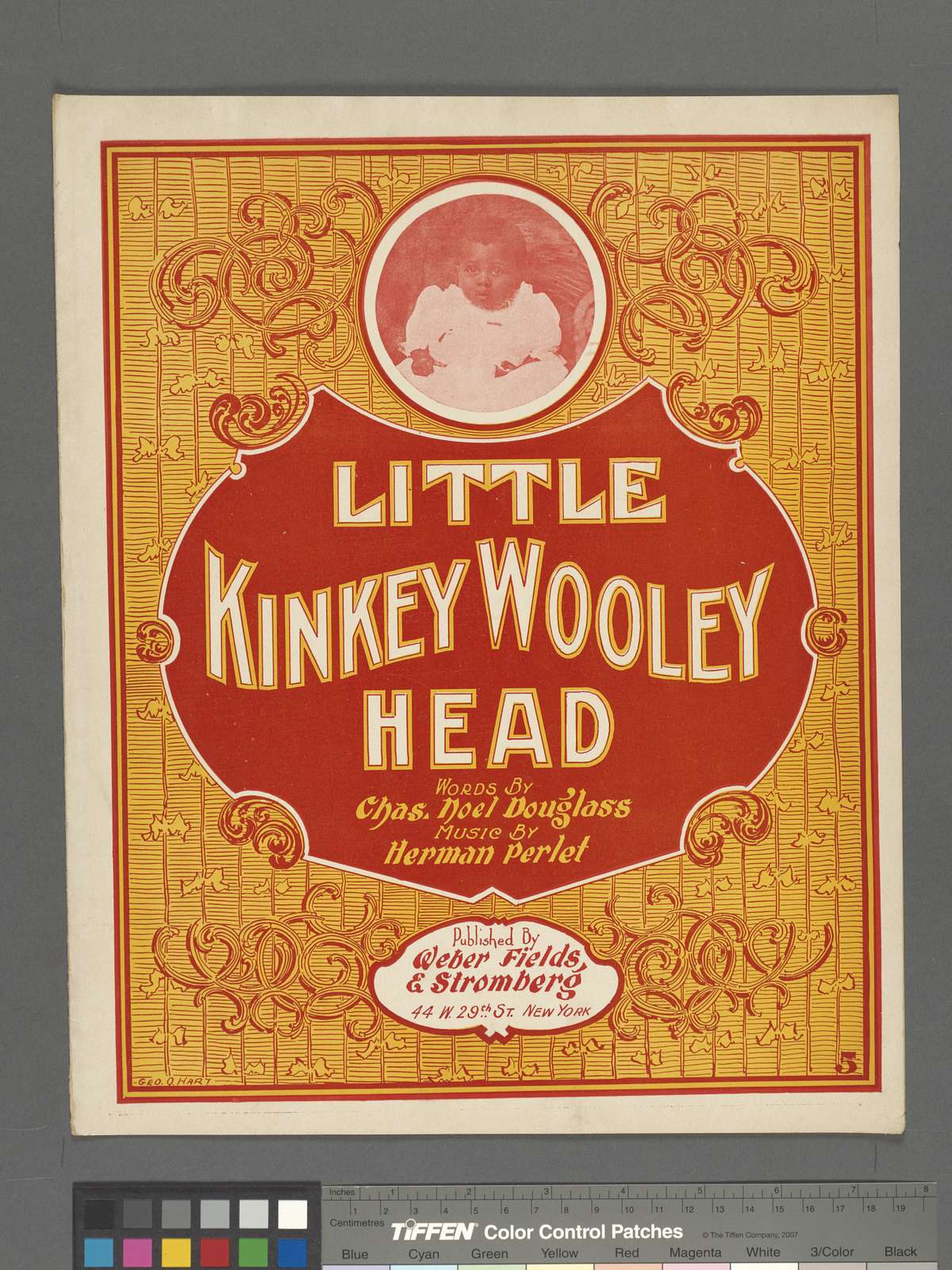 Little Kinkey wooley head