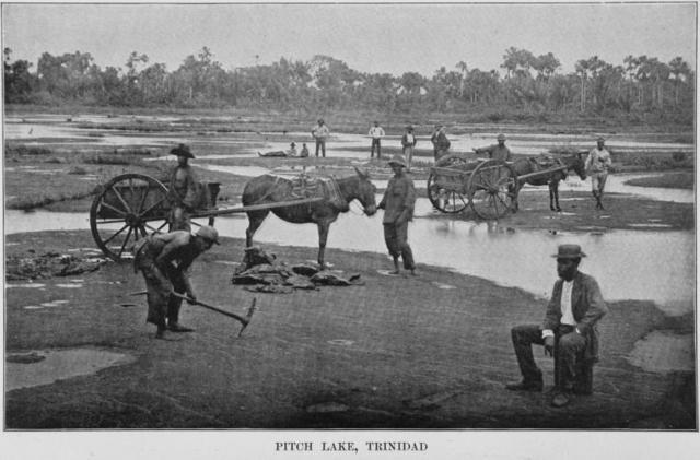 Pitch Lake, Trinidad