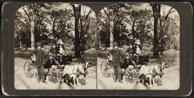 The children's delight, Central Park, N.Y. city, U.S.A.