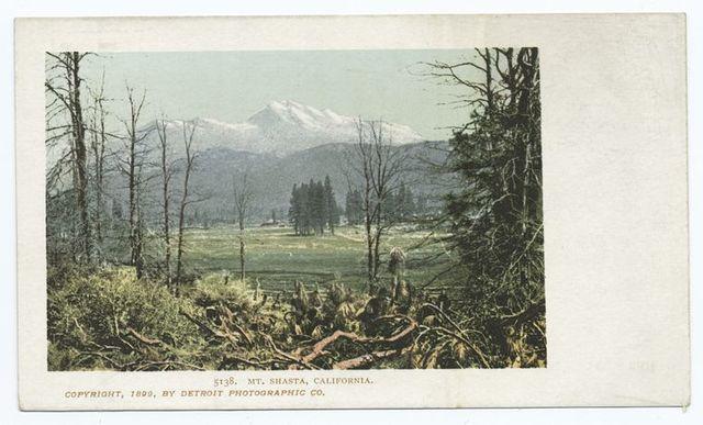 Mt. Shasta, Mt. Shasta, Calif.