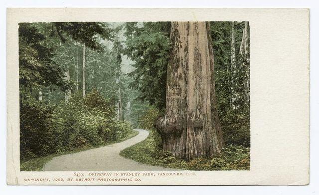 Stanley Park, Siwash Rock, Vancouver, B. C.