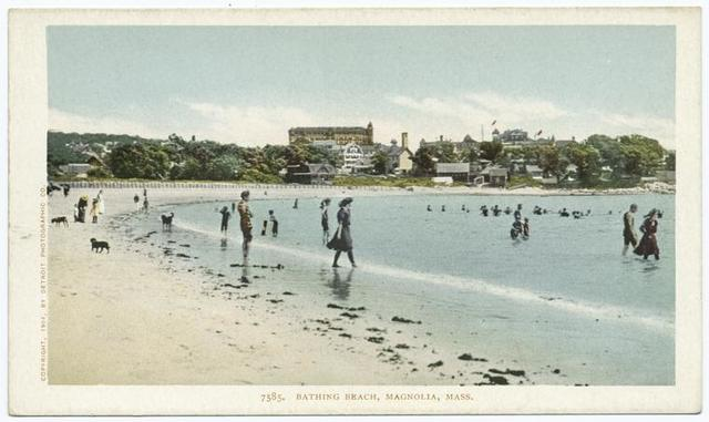 Bathing Beach, Magnolia, Mass.