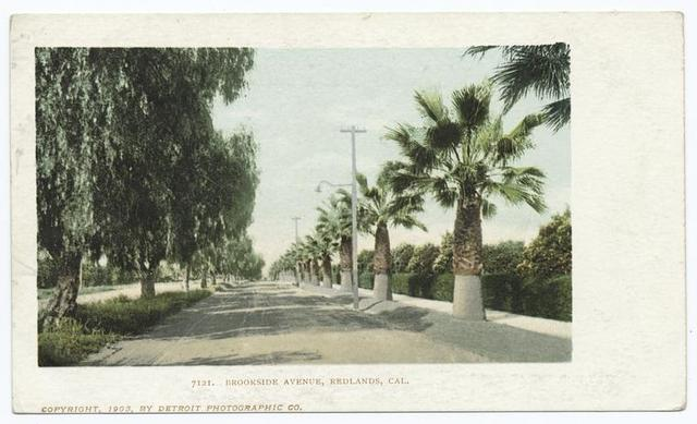 Brookside Avenue, Pasadena, Calif.
