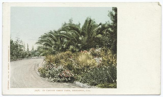 In Canyon Crest Park, Redlands, Calif.