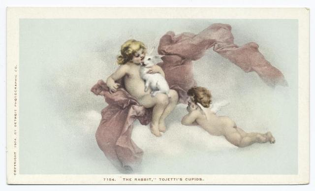 Tojetti's Frescoes -  Rabbit, Ponce de Leon H., St. Augugtine, Fla.