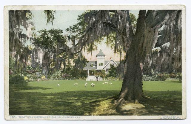 Ashley Hall, Magnolia on the Ashley, Charleston, S.C.