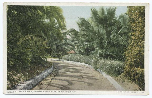 Palm Knoll, Canyon Crest Park, Redlands, Calif.