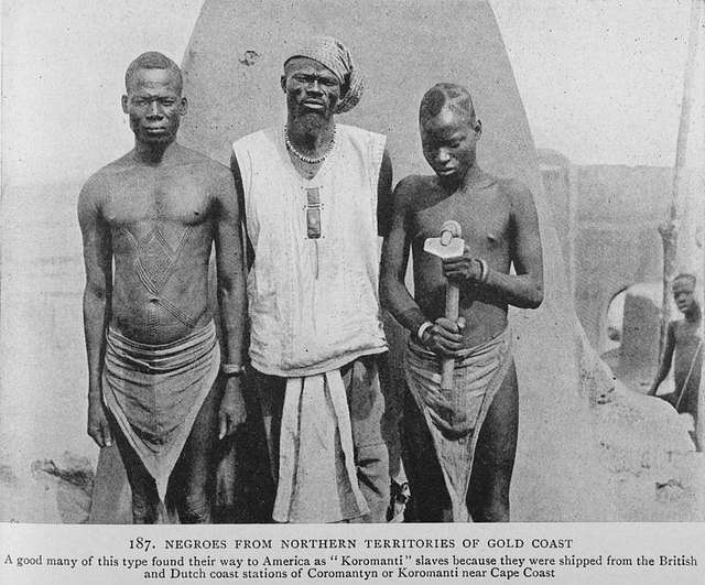"""Negroes from northern territories of Gold Coast; A good many of this type found their way to America as """"Koromanti"""" slaves because they were shipped from  the British and Dutch coast stations of Coromantyn or Koromanti near Cape Coast."""