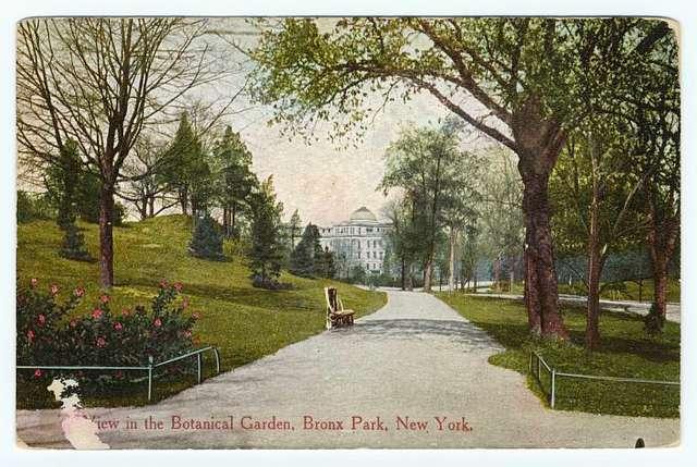 View in the Botanical Garden, Bronx Park, New York
