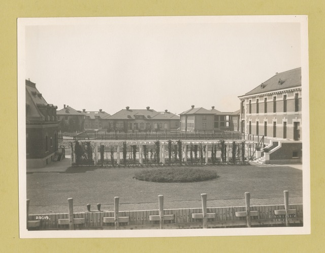 View of Ellis Island buildings, with garden and trellises in foreground.