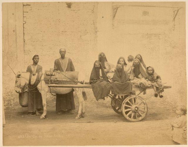 Charette des femme-arabes