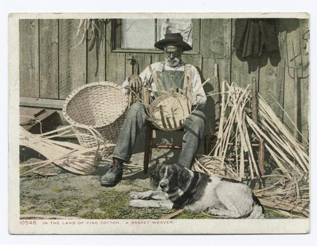 A Basket Weaver, In the Land of King Cotton