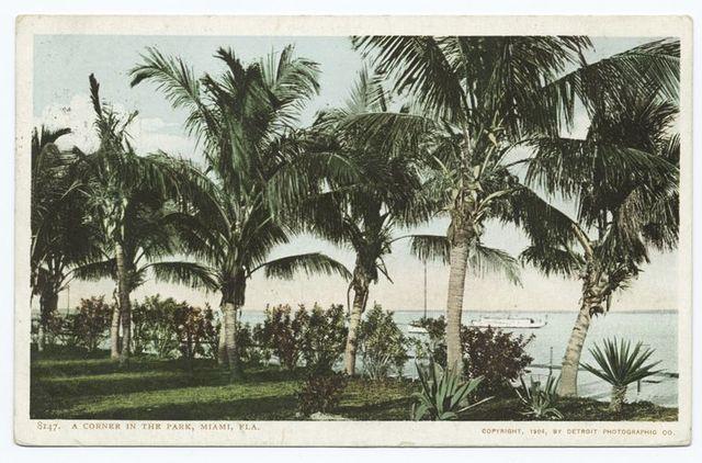 A Corner in the Park, Miami, Fla.