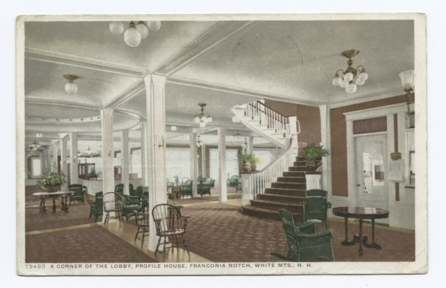 A Corner of the Lobby, Profile House, Franconia Notch, White Mts., N. Y.
