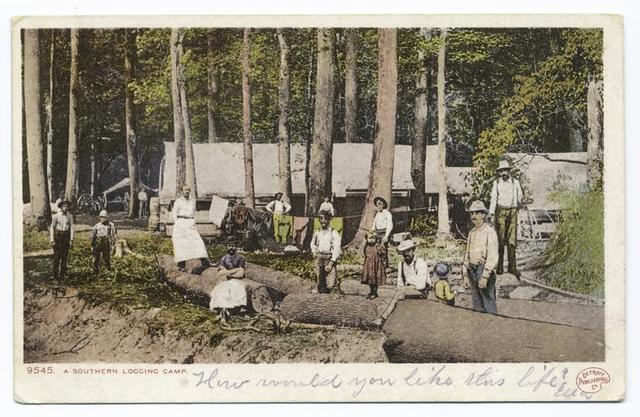 A Southern Logging Camp, South