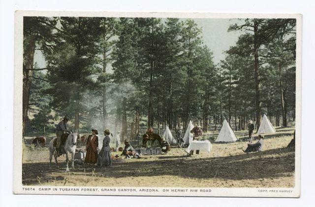 Camp in Tusuyan Forest, Hermit Rim, Grand Canyon, Ariz.