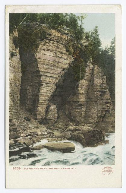 Elephant's Head, Au Sable Chasm, N. Y.