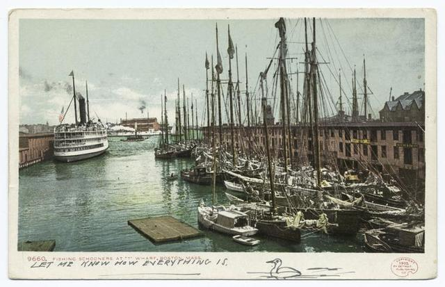 Fishing Schooners at T Wharf, Boston, Mass.