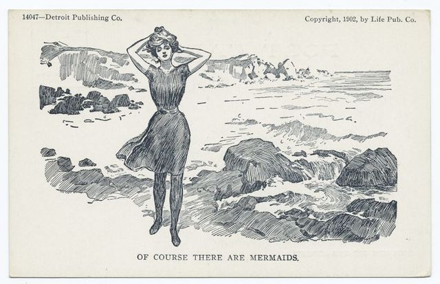 Of Course there are Mermaids, Life Cartoons