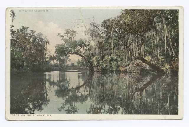On the Tomoka, Florida