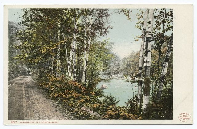 Roadway, Adirondacks, N. Y.