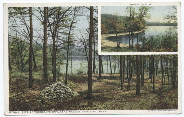 Site of Thoreau's Hut, Concord, Mass.