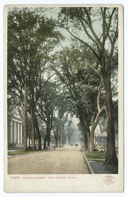 Temple Street, New Haven, Conn.