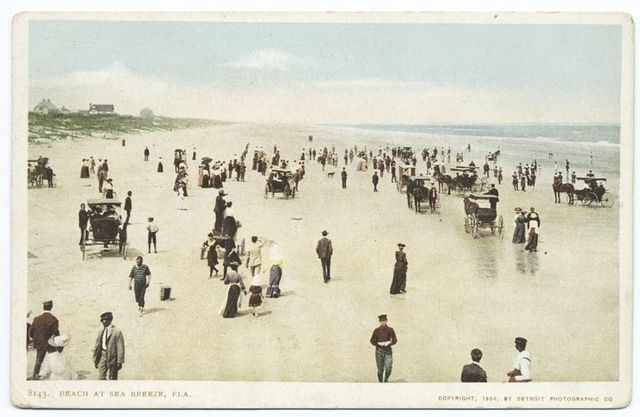 The Beach at Seabreeze, Daytona, Fla.