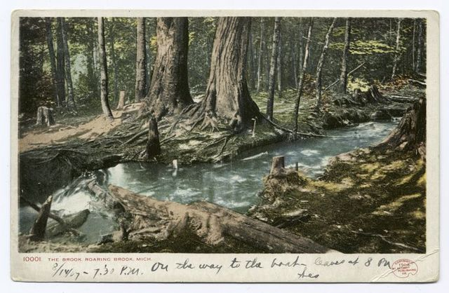 The Brook, Roaring Brook, Mich.