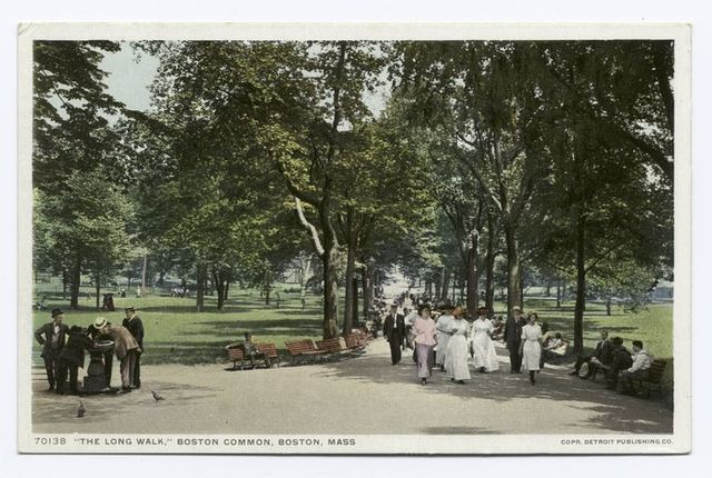 The Long Walk, Boston Common, Boston, Mass.